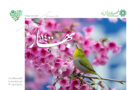 گزارش تصویری اقدامات شهرداری فیض آباد در استقبال از بهار ۱۴۰۰